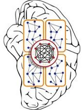 الگوریتم های مسیریابی در شبکه های موردی